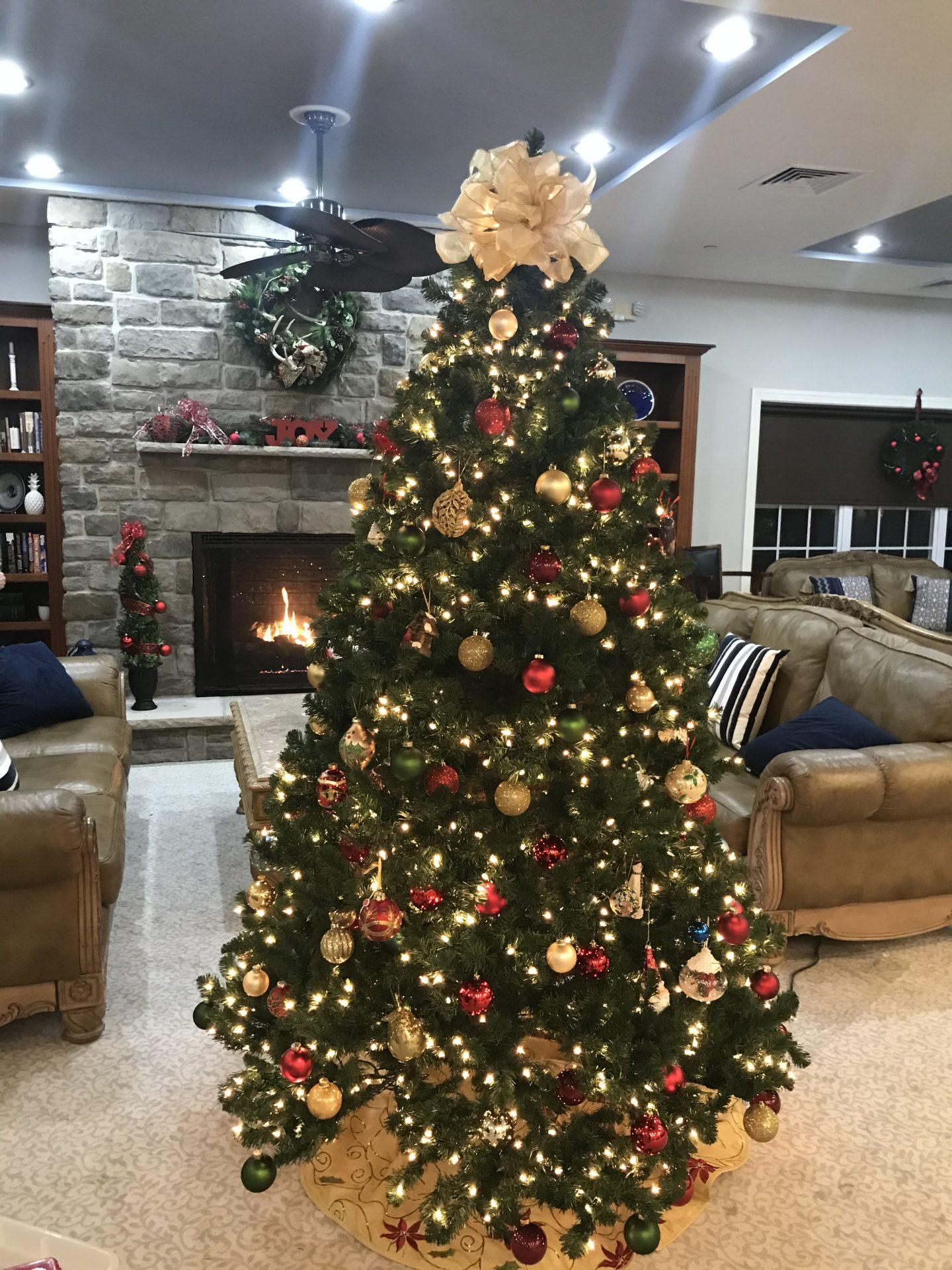 2 christmas tree
